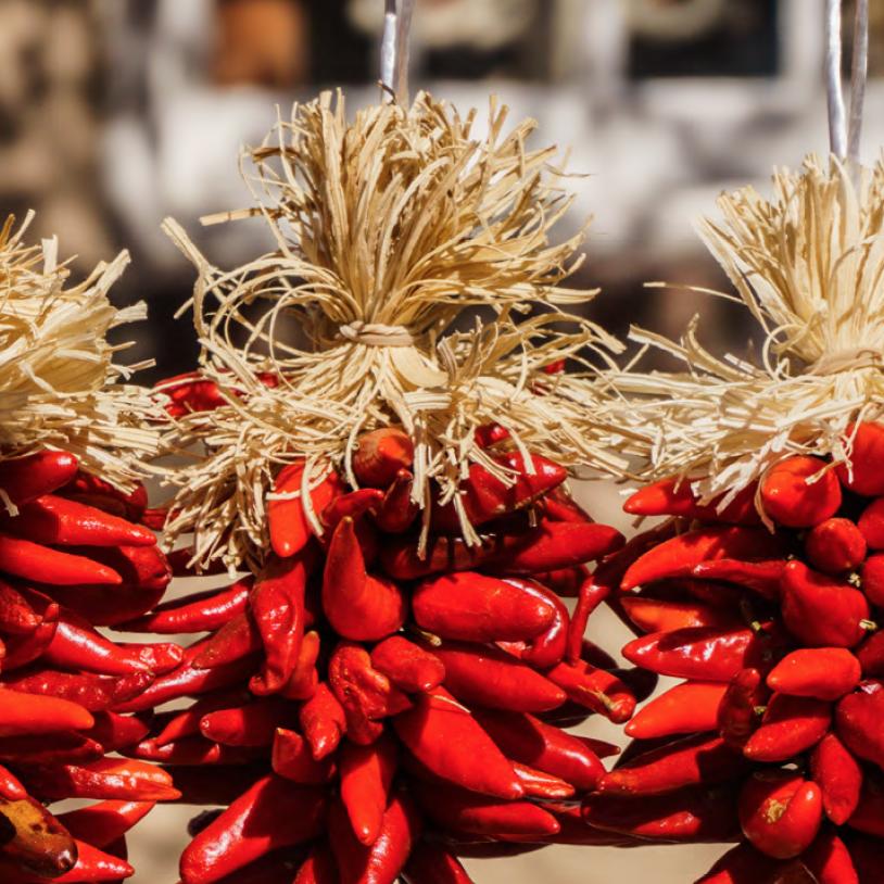 Escapade gastronomique & culturelle au Mexique avec K, l'essentiel du circuit, de Kuoni